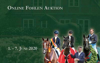Online Fohlen Auktion